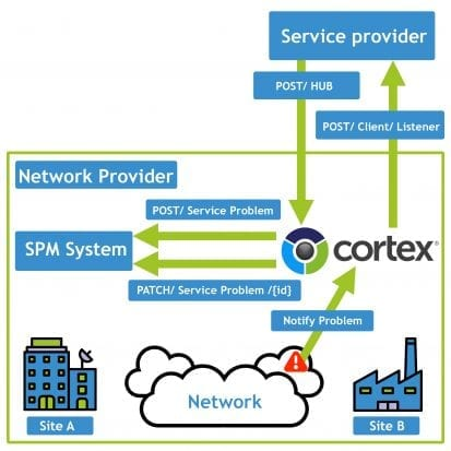 Cortex TM Forum NaaS OpenAPI Use Case 2